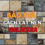 Bảng báo giá vật liệu xây dựng gạch lát nền Viglacera