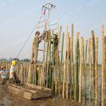 Biện pháp đóng cọc tre trong thi công xây dựng công trình